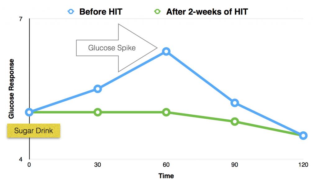 HIT increases insulin sensitivity