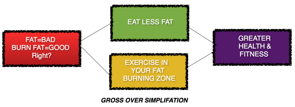fat burning thought process simplification
