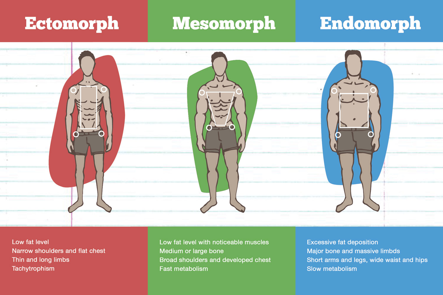 How your body responds to resistance training is largely predicated by your genes and body type.